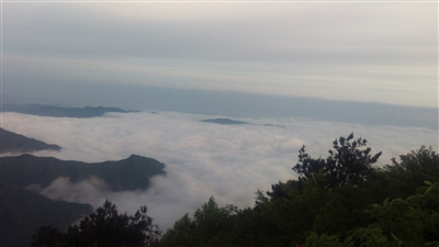 气势磅礴的云海与山林,野花相互映衬,构成了一幅幅绝美的泼墨山水画卷